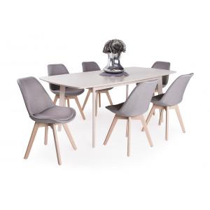 Világos bükk asztal + szürke szék